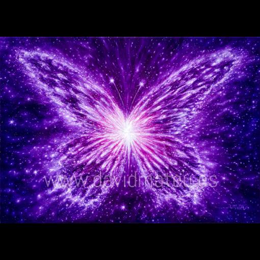 Mariposa de la Transmutación